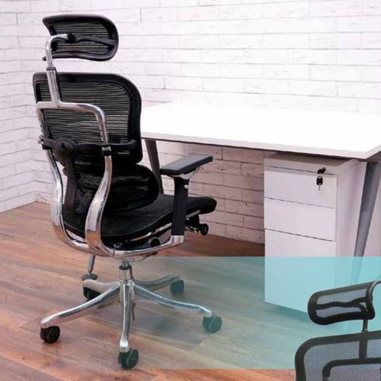 Менаџерски стол Ergohuman menadzerski stol